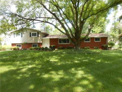 Single Family Home Contingency/Show: 3301 Kappel Drive