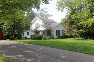 Springfield Single Family Home For Sale: 4027 Sintz Road