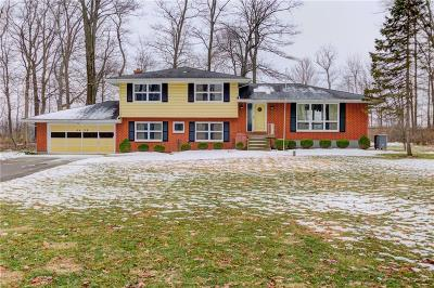 Springfield Single Family Home For Sale: 4439 S Tecumseh Road