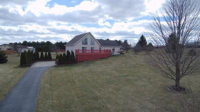 Springfield Single Family Home For Sale: 1949 E County Line Road