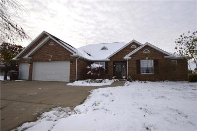 New Carlisle Single Family Home For Sale: 301 Quick Road