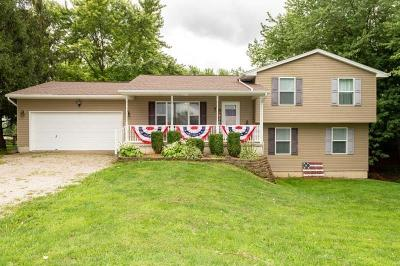 Springfield Single Family Home For Sale: 4275 Mumper Road