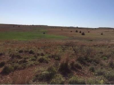 Farm & Ranch For Sale: 4 E1030 Road