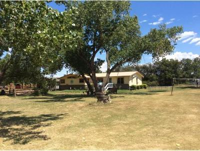 Sayre Single Family Home For Sale: 12316 Us Highway 283