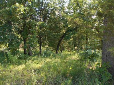 Lincoln County Residential Lots & Land For Sale: West Oakhill Drive