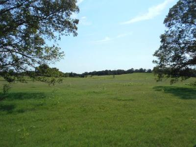 Lincoln County Farm & Ranch For Sale: 177