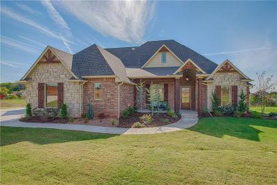 Norman Single Family Home For Sale: 800 Villaverde Drive