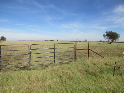 Weatherford Residential Lots & Land For Sale: 0000 E Rt. 66 N