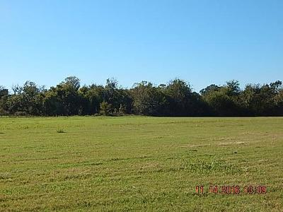 Residential Lots & Land For Sale: 00 Cotton Gin Road