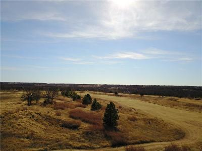 Blanchard Commercial For Sale: 1000 Pintail Circle