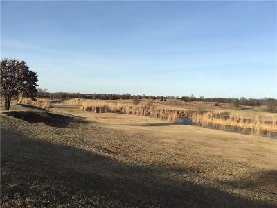 Blanchard Commercial For Sale: 1001 Golf Club Drive