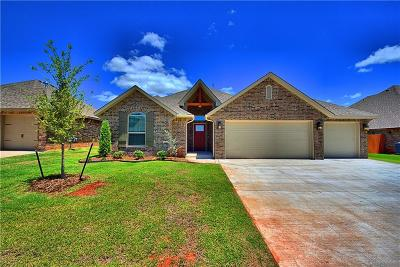 Norman Single Family Home For Sale: 3832 Vista Drive