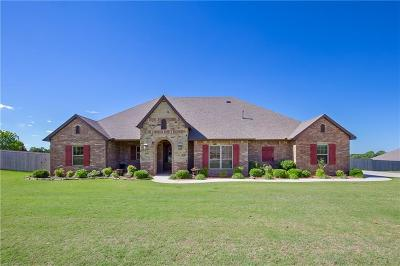Blanchard Single Family Home For Sale: 3170 Staghorn Drive