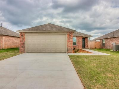 Oklahoma City Single Family Home For Sale: 10248 Hidden Village Drive