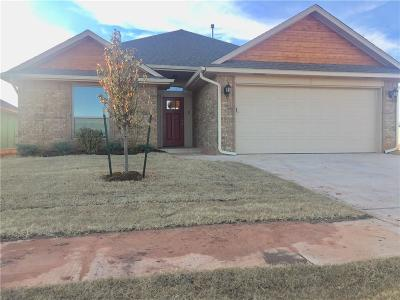 Oklahoma City Single Family Home For Sale: 4013 Wind Haven Drive