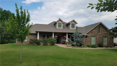 Mustang Single Family Home For Sale: 406 S Chloe Lane