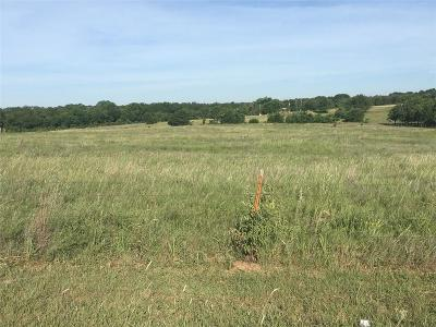 Blanchard Residential Lots & Land For Sale: NW 10th And Silver Stone Road