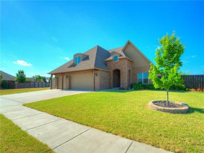 Norman Single Family Home For Sale: 2500 Langley Court