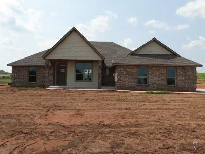 Blanchard Single Family Home For Sale: 1378 County Street 2976
