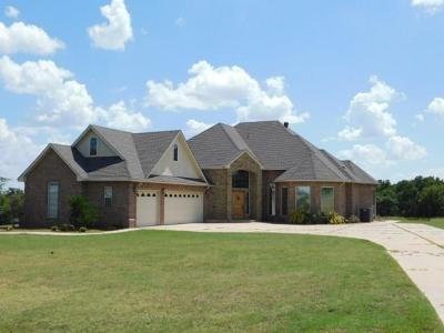 Blanchard Single Family Home For Sale: 4110 Paradise Drive