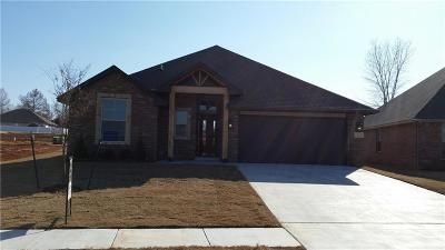 Norman Single Family Home For Sale: 1916 Tyler Drive