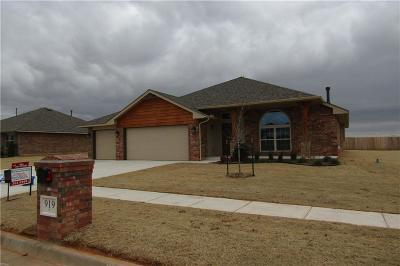 Chickasha Single Family Home For Sale: 919 Lazywood Drive