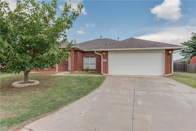 Norman Single Family Home For Sale: 1128 Bald Eagle Court