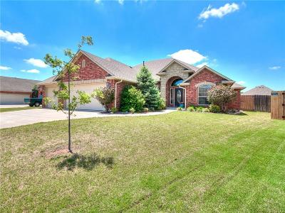 Norman Single Family Home For Sale: 404 Summit Way
