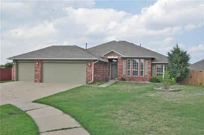 Edmond Single Family Home For Sale: 16236 Panther Way