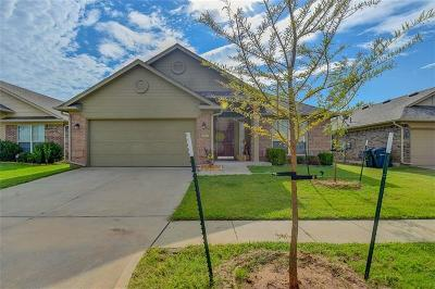 Oklahoma City Single Family Home For Sale: 16000 Raindust Drive