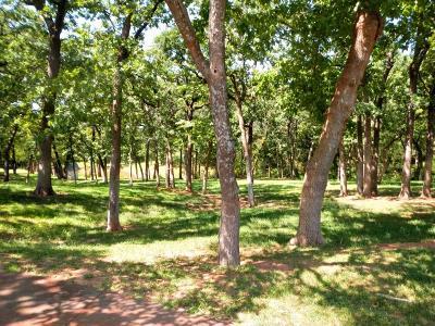 Oklahoma City Residential Lots & Land For Sale: Aurelia Road