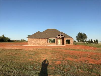 Blanchard Single Family Home For Sale: 1387 County Street 2966