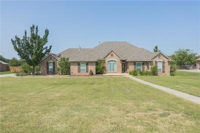 Oklahoma City Single Family Home For Sale: 10201 SE 45th Street