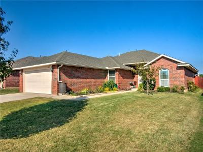 Norman Single Family Home For Sale: 4205 Elf Owl Court