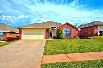 Norman Single Family Home For Sale: 713 Shadowhill Street