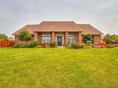 Mustang Single Family Home For Sale: 710 Songbird