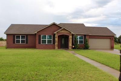 Sayre Single Family Home For Sale: 17 Fairway Drive