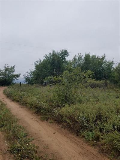 Residential Lots & Land For Sale: County Road 156