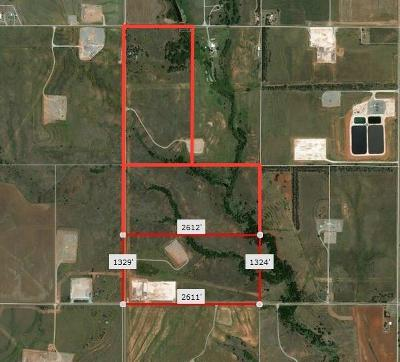 Beckham County Farm & Ranch For Sale: E1120 Rd