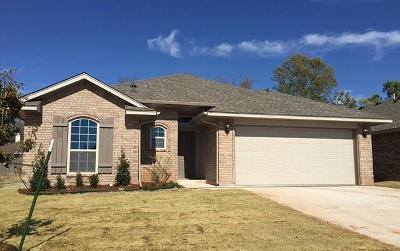 Norman Single Family Home For Sale: 517 Talon Drive