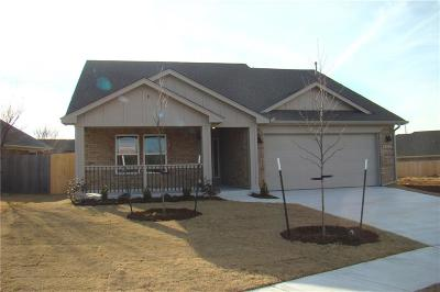 Norman Single Family Home For Sale: 702 Leopard Lily Drive
