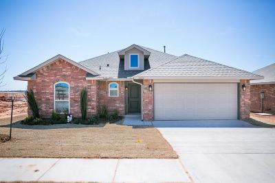 Norman Single Family Home For Sale: 3920 Colefax Lane