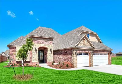 Norman Single Family Home For Sale: 3210 Timber Shadows
