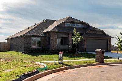 Moore Single Family Home For Sale: 16000 Tall Grass Drive