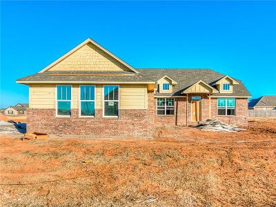 Norman Single Family Home For Sale: 18385 Stagecoach Trail