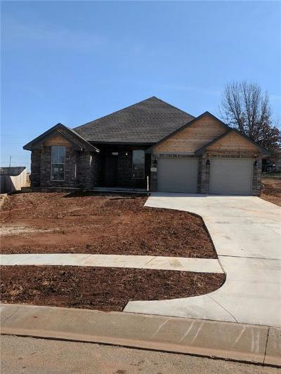 Norman Single Family Home For Sale: 517 Hunter Drive