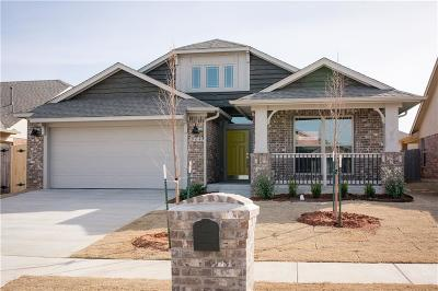 Norman Single Family Home For Sale: 904 Bear Mountain Drive