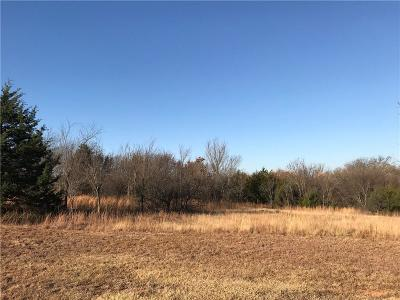 Blanchard Residential Lots & Land For Sale: S Main