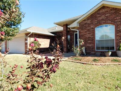 Norman Single Family Home For Sale: 4117 Sparrow Hawk Dr