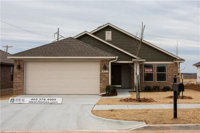 Norman Single Family Home For Sale: 821 Barbaroot Drive
